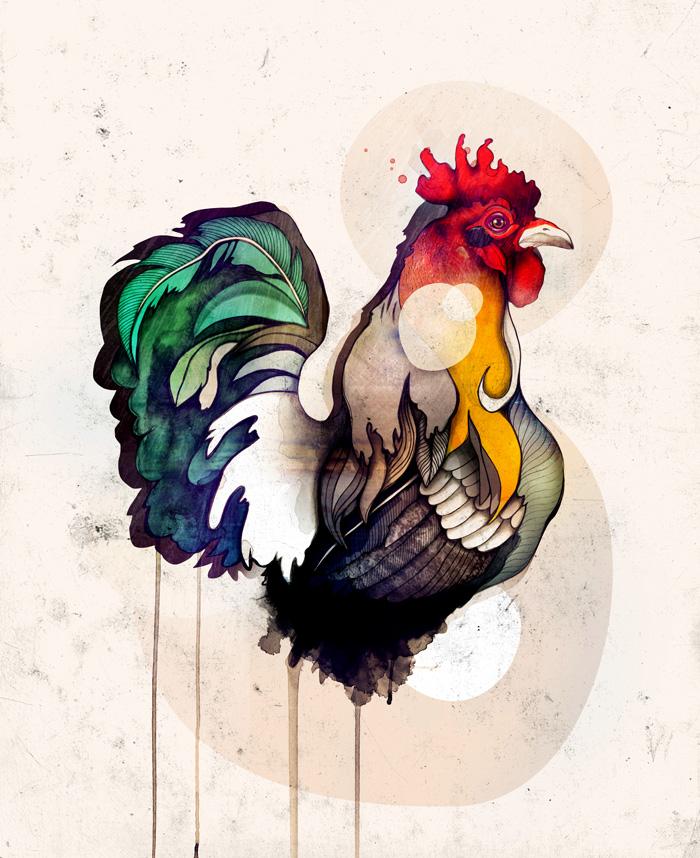 Rooster - Sara Blake