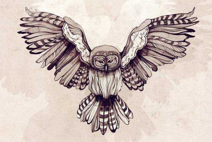 Owl - Sara Blake